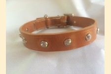Crystal Stud Dog Collar