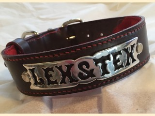 A PERSONALISED PLATE COLLAR